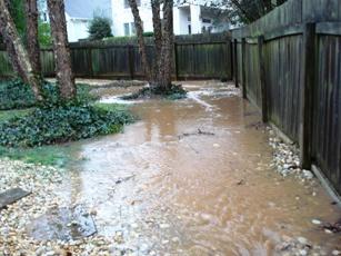 Common Drainage Problems